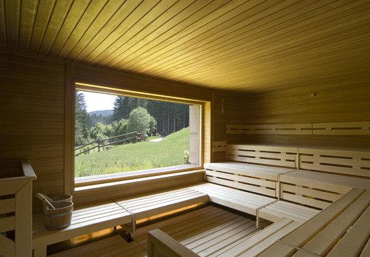 wooden swimming pool log cabin