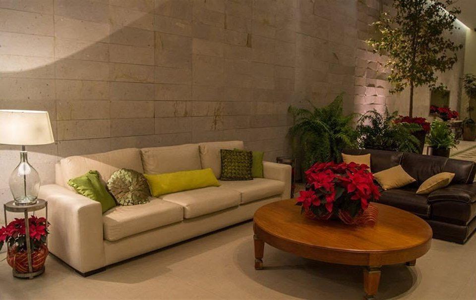 Lounge Luxury sofa living room property home