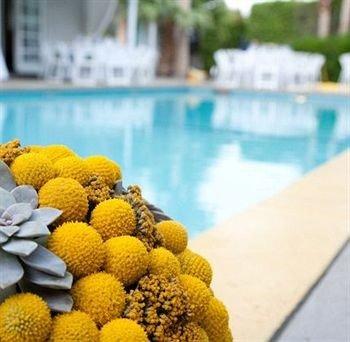 Lounge Luxury Modern Pool flower