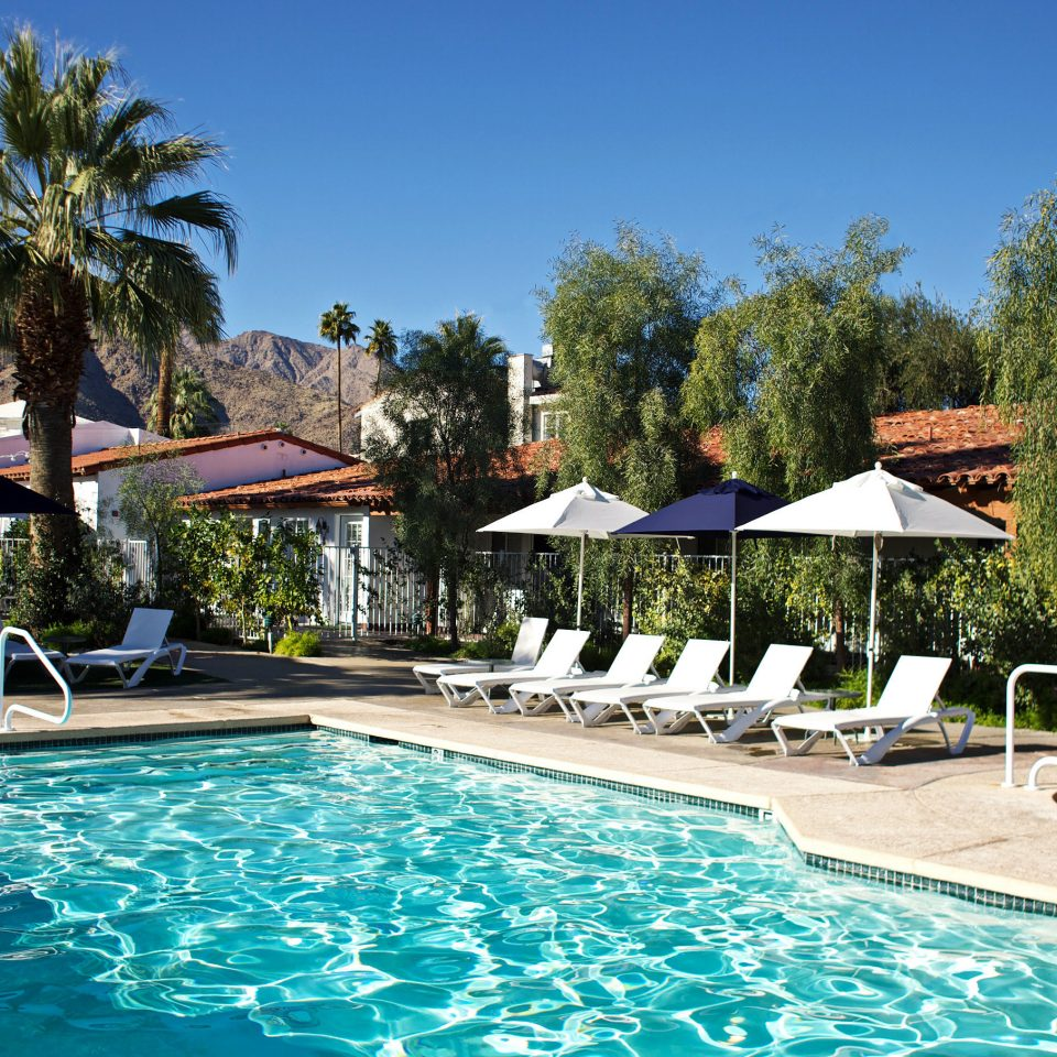 Lounge Luxury Modern Pool tree sky swimming pool leisure property Resort swimming Villa resort town backyard condominium