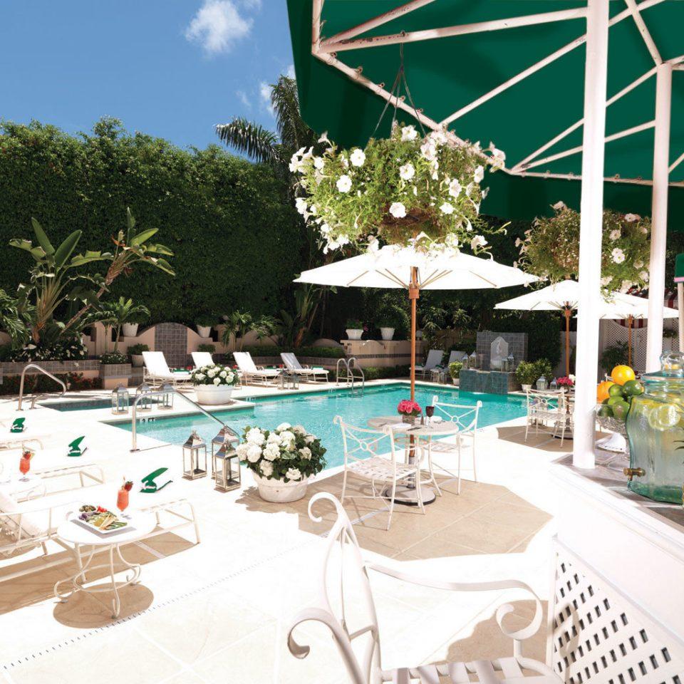 Lounge Luxury Modern Pool tree leisure property swimming pool Resort Villa backyard
