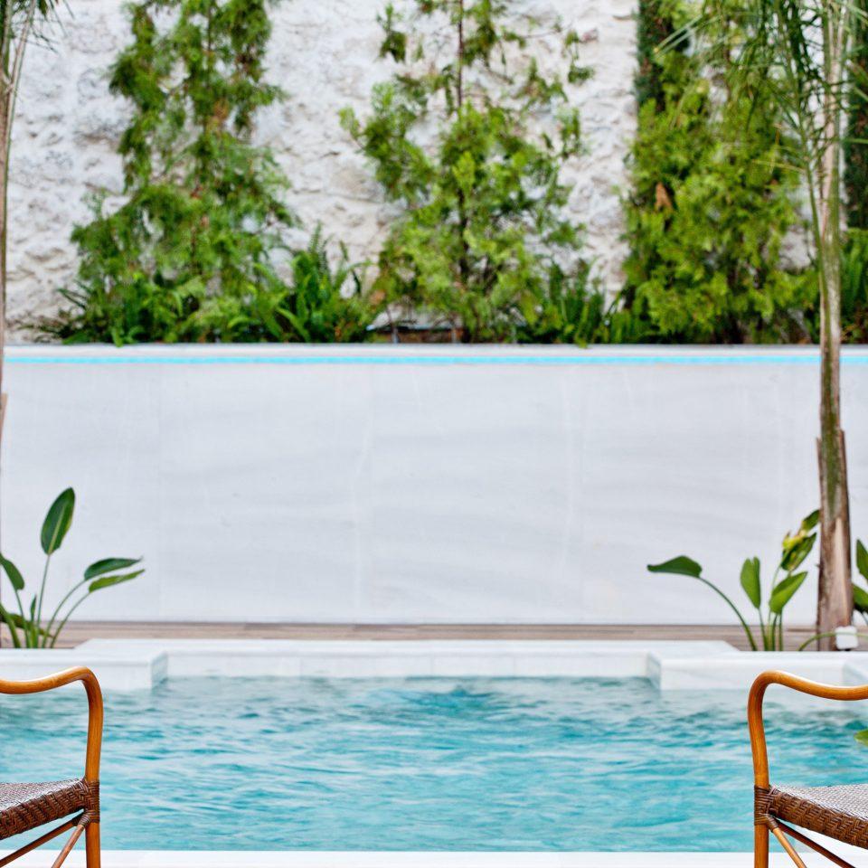 Lounge Luxury Modern Pool Trip Ideas tree chair swimming pool backyard home flower