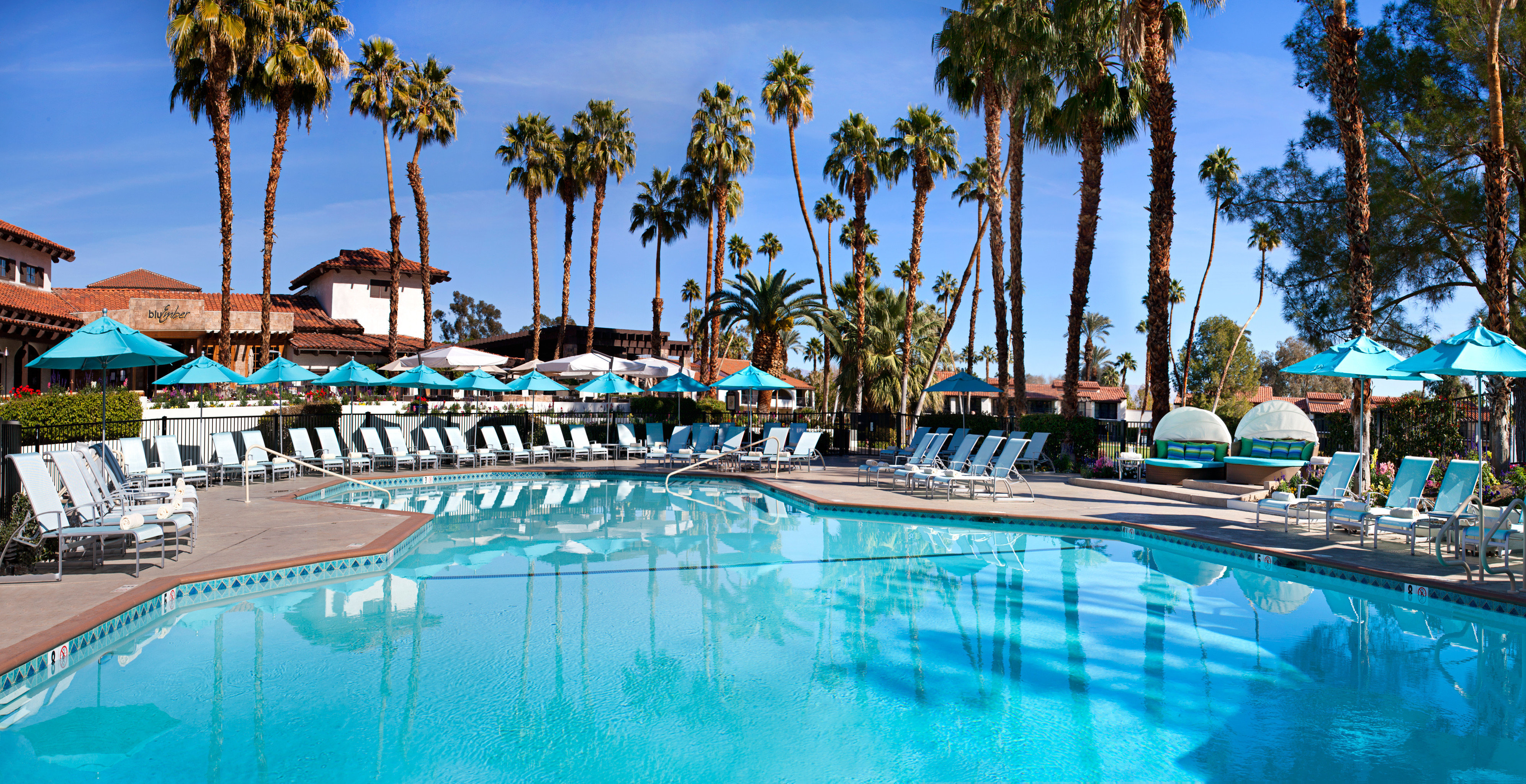 Lounge Luxury Pool tree sky umbrella swimming pool leisure palm Resort lined resort town Water park swimming