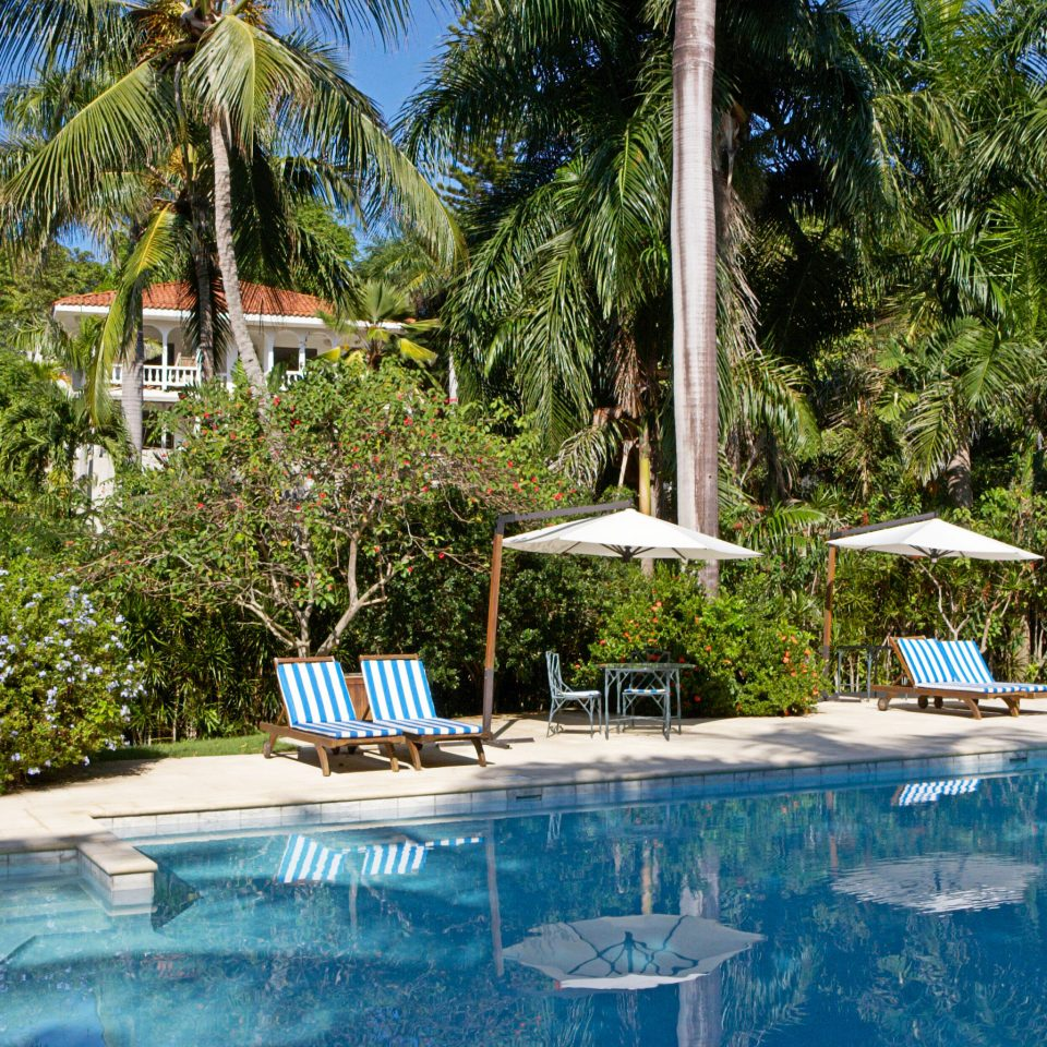 Luxury Play Pool Resort tree swimming pool leisure property backyard Villa shade