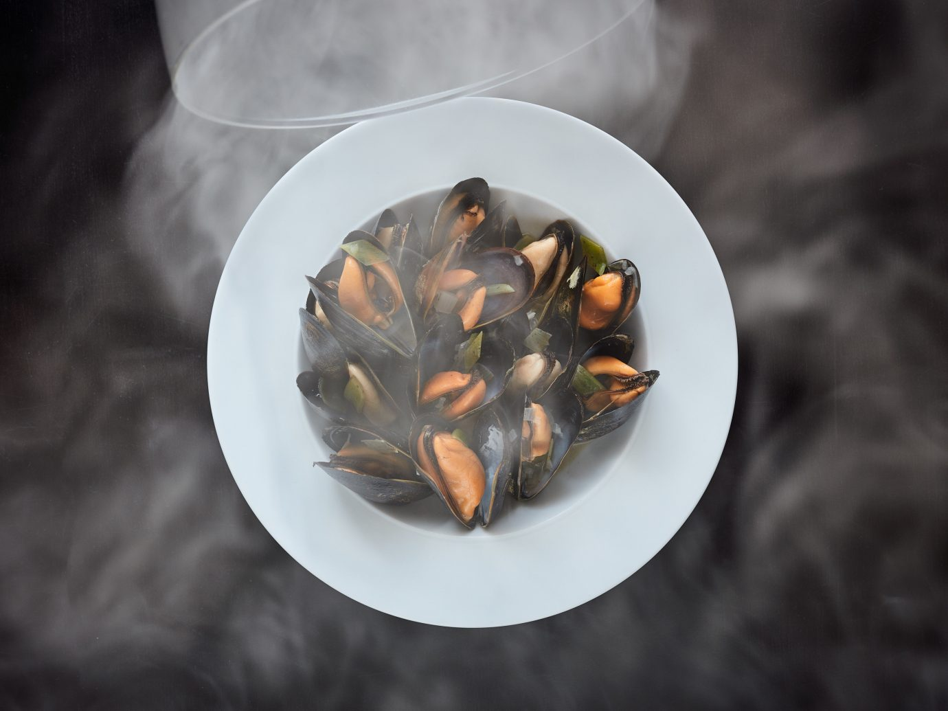 Food + Drink plate food mussel leaf close up macro photography white Seafood produce invertebrate flower clams oysters mussels and scallops vegetable sliced containing