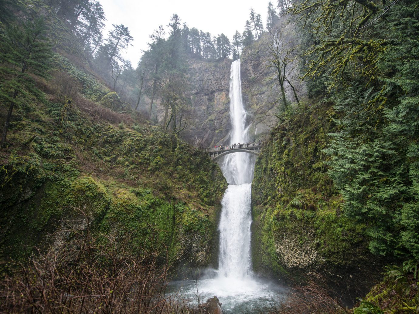 Lakes + Rivers Landmarks Road Trips Trip Ideas Weekend Getaways tree outdoor Nature Waterfall water body of water water feature geological phenomenon Forest rainforest wasserfall ravine old growth forest surrounded