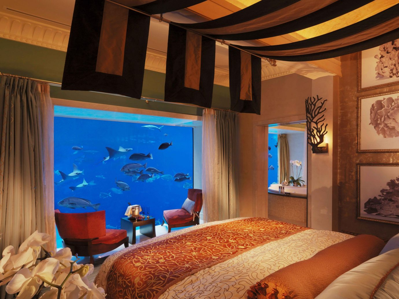 Scuba Diving + Snorkeling Trip Ideas indoor room property estate Suite living room interior design Resort Bedroom home cottage