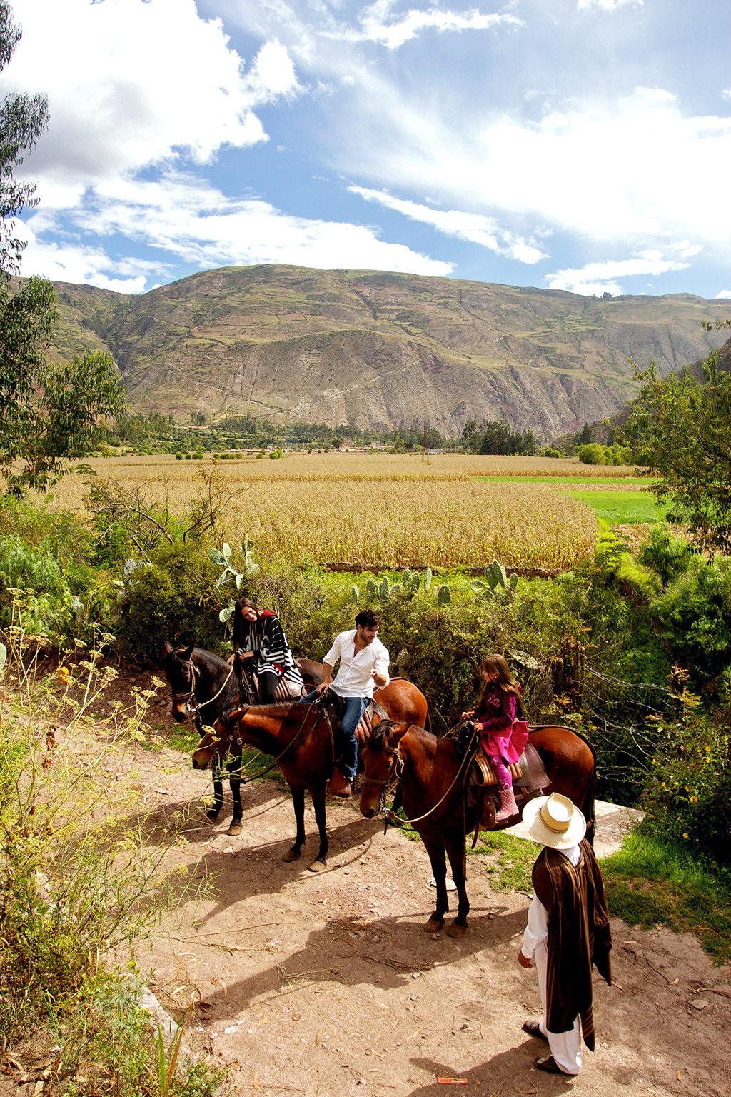 Mountains Nature Outdoor Activities Outdoors Sport sky mountain grass ground cow path trail riding dirt rural area landscape walking mammal cattle backpacking Ranch trail hiking