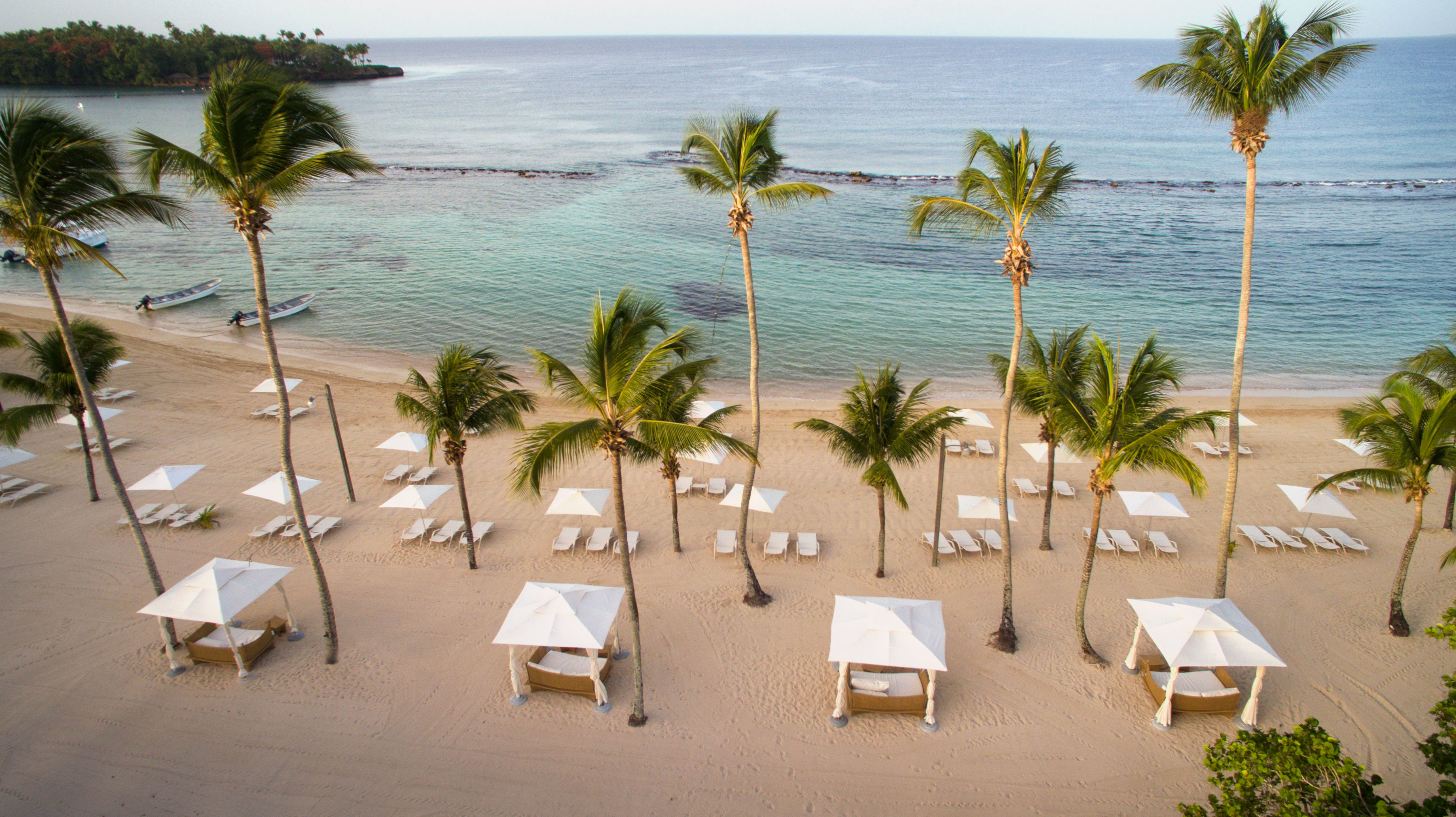 Budget water tree palm outdoor Beach vacation arecales plant palm family Sea Resort caribbean shore sand furniture