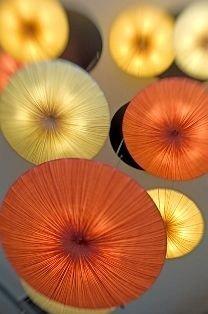 color Music open food plant petal land plant vegetable flower flowering plant fruit colorful pumpkin different colored