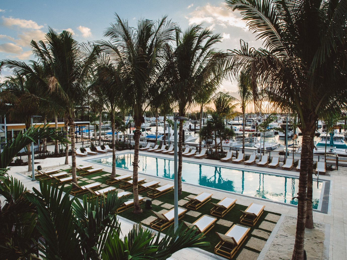 Florida Hotels tree outdoor Resort water palm tree arecales swimming pool leisure plant vacation palm hotel park lined tourism recreation condominium tropics area shore furniture several