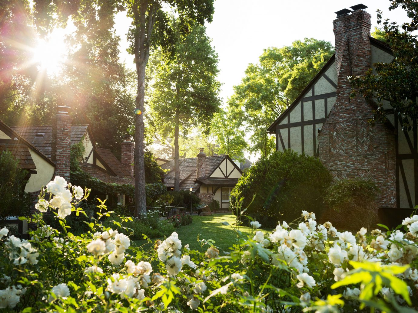 Exterior Garden Grounds Inn Romantic tree flower outdoor plant house backyard yard estate lawn sunlight cottage Courtyard bushes surrounded day