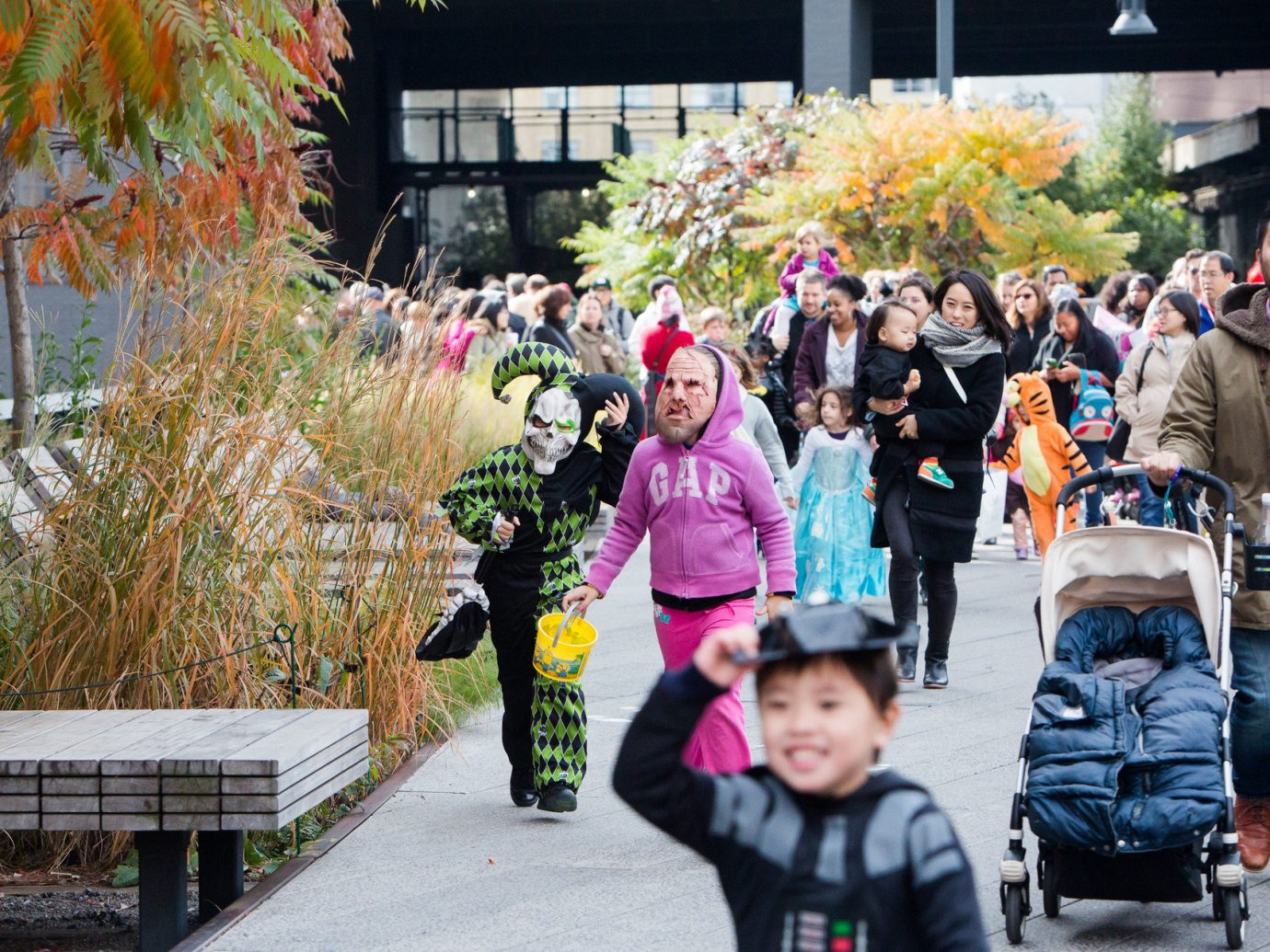 activities Budget children City costume crowd festival fun halloween parade people outdoor person tree park street spring group pedestrian