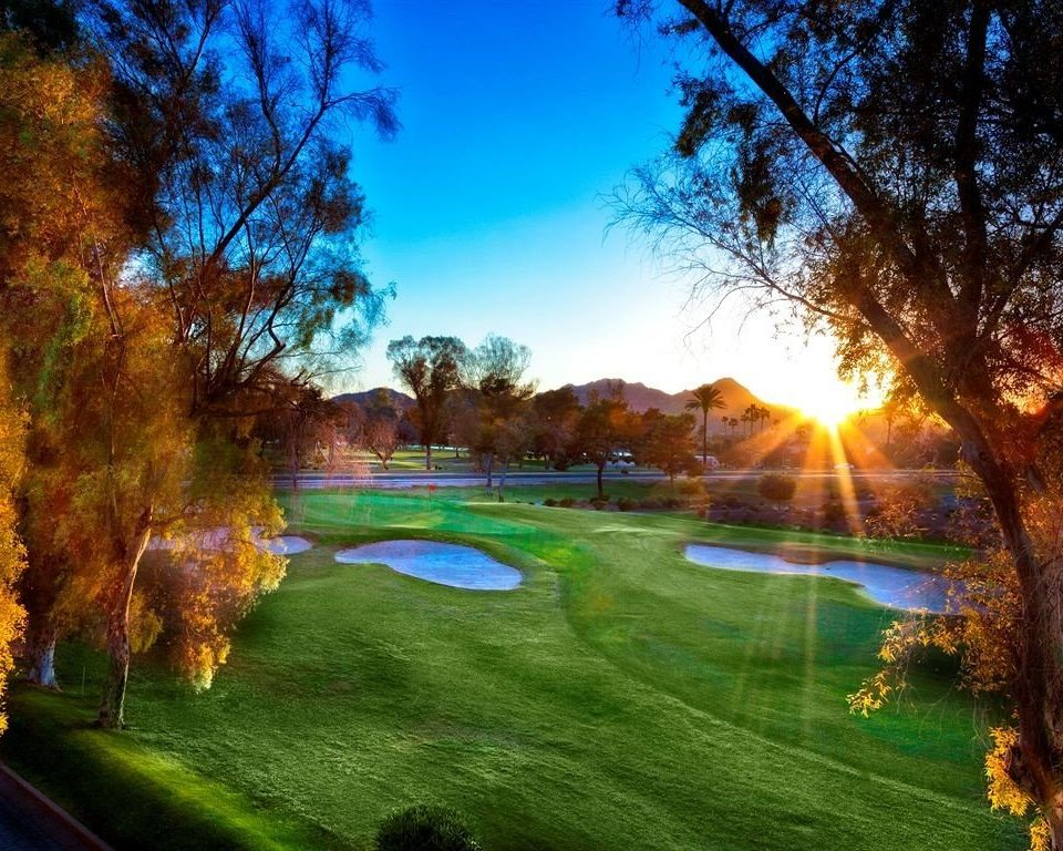 tree Nature structure grass lawn sport venue golf course sunlight autumn meadow surrounded