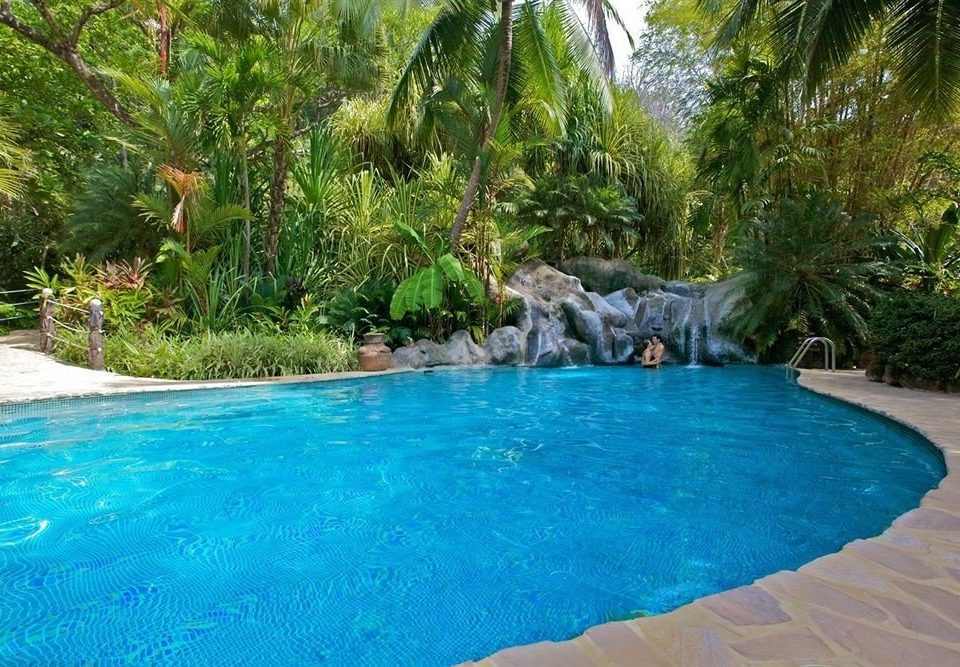 tree water Pool swimming pool swimming blue backyard Nature Resort surrounded