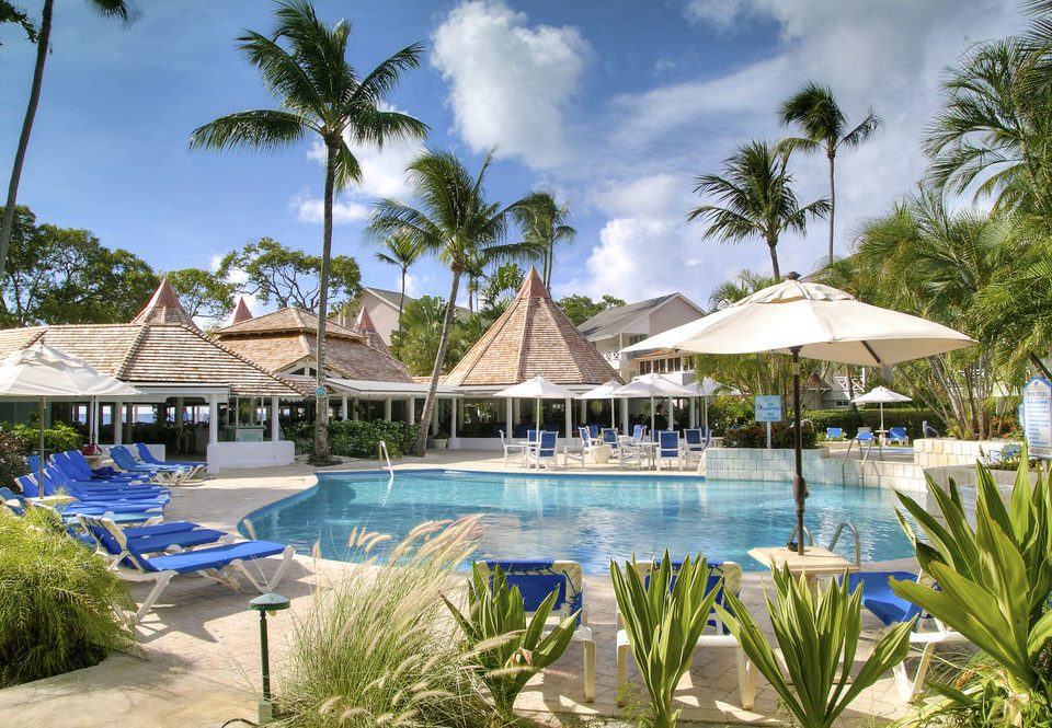 tree Resort swimming pool property leisure Pool caribbean lawn Nature arecales Villa resort town condominium palm blue lined surrounded