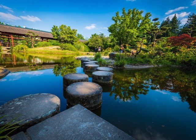 sky tree Nature water swimming pool pond Resort surrounded