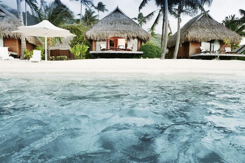 building snow tree house water swimming pool Resort Sea Nature residential