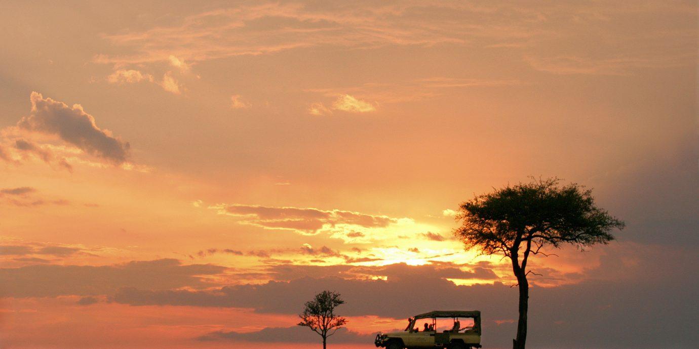 sky Sunset Nature horizon savanna atmospheric phenomenon Sun cloud sunrise plain tree dawn afterglow grassland field setting dusk morning prairie evening rural area landscape plant clouds