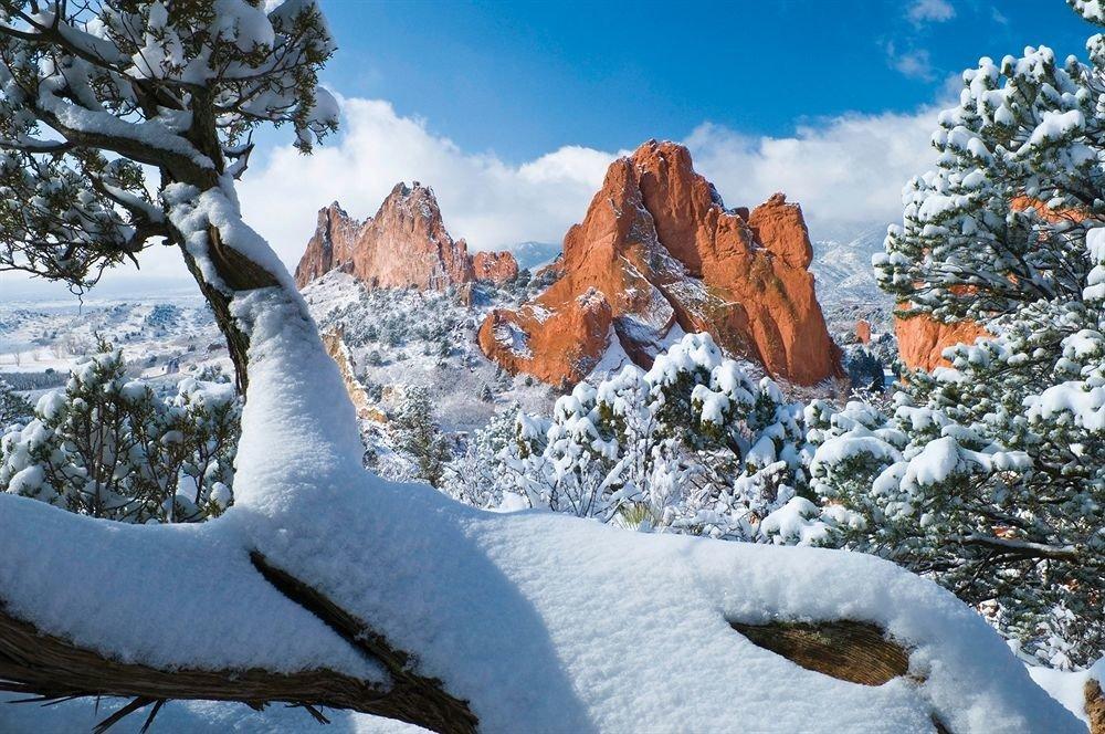 snow tree mountainous landforms Winter Nature wilderness mountain weather ecosystem season geological phenomenon mountain range ridge fresh