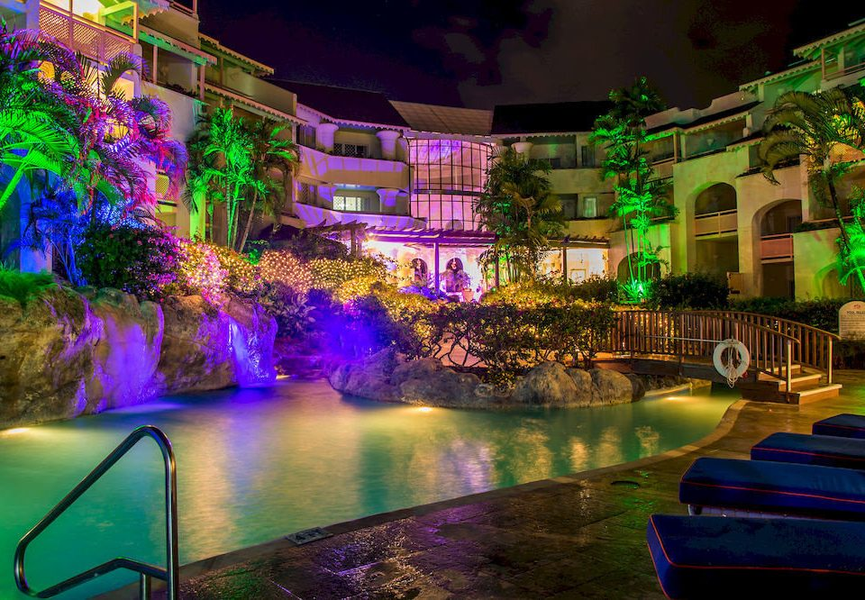 Nightlife Pool Romantic color night colorful light evening cityscape flower christmas lights Resort colored