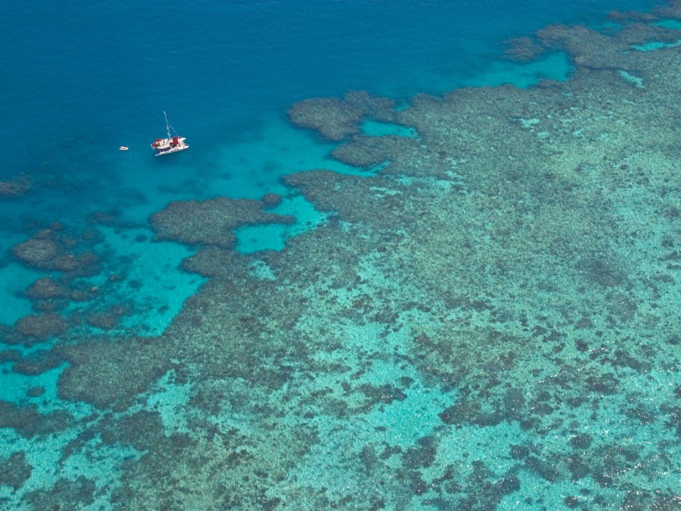 Trip Ideas reef habitat coral reef landform marine biology geographical feature Sea underwater Ocean biology coral diving water sport coral reef fish Island ocean floor