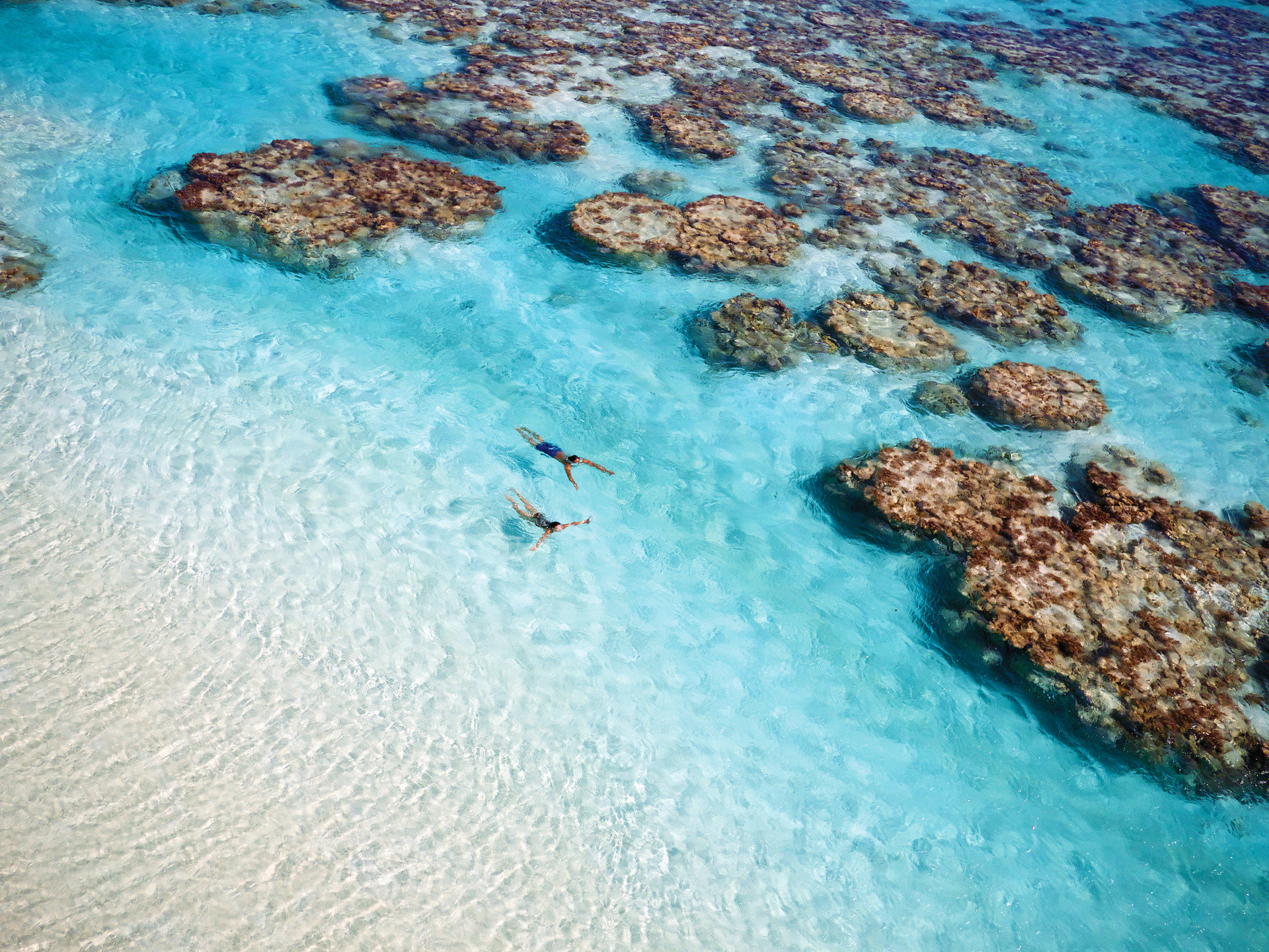 Beach calm clear water Islands isolation Ocean Outdoor Activities people remote serene swim swimmers swimming Travel Tips Tropical turquoise Water activities Water Sports white sands water Nature marine biology Sea reef biology Pool coral reef underwater Coast coral sand tide pool shore