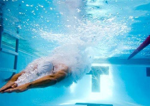 water water sport swimming pool underwater marine biology Sport swimming biology Ocean sports marine mammal Sea diving wave