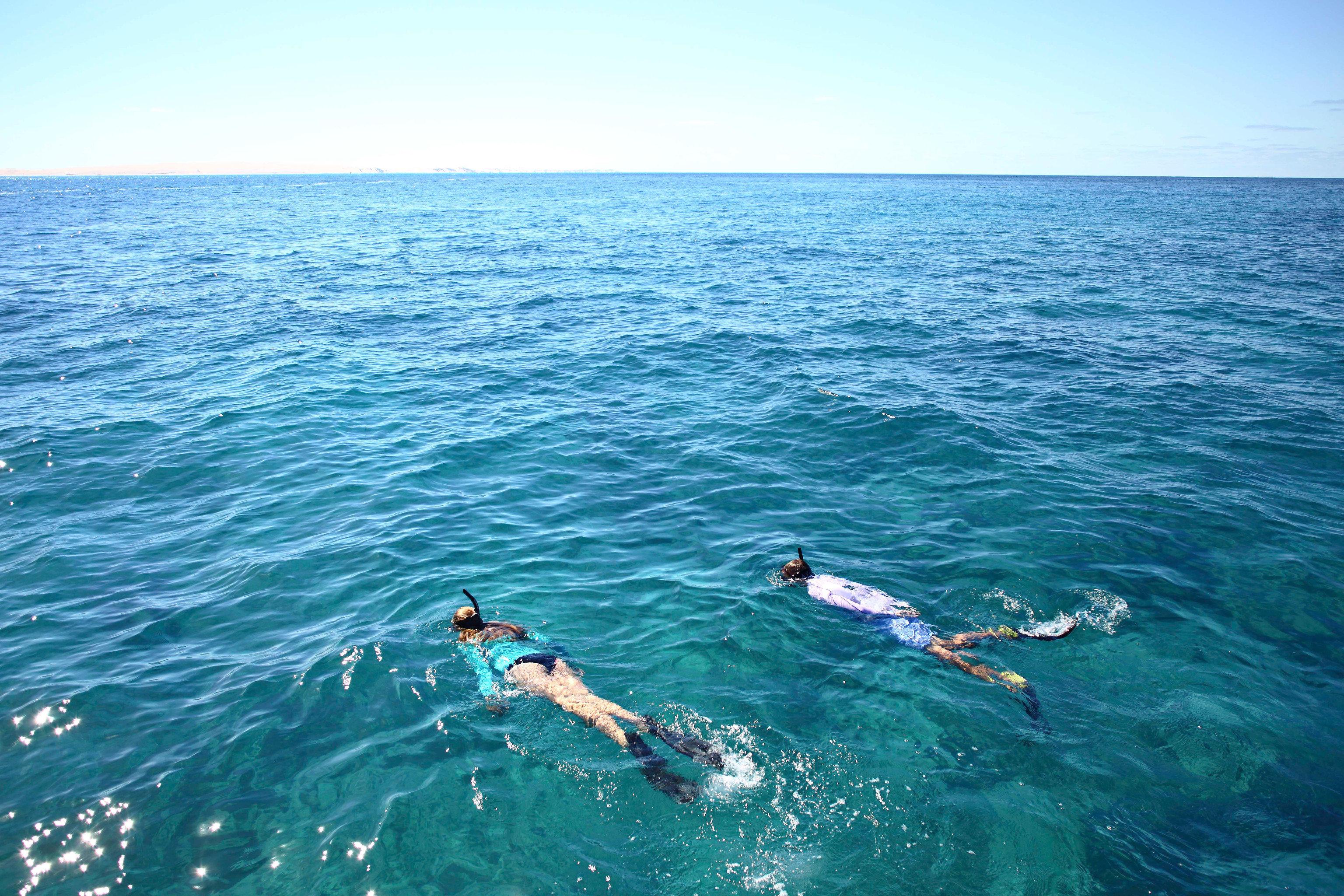 water sky Sport water sport Ocean riding marine biology Sea sports wind wave wave surfing swimming cape