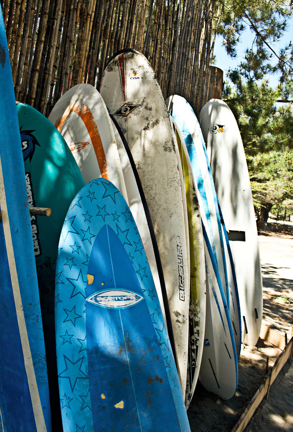 Outdoor Activities Outdoors Play Sport Wellness color surfing blue boarding surfboard surfing equipment and supplies spring group row lined sports equipment vehicle rack bunch shoes plant line clothes