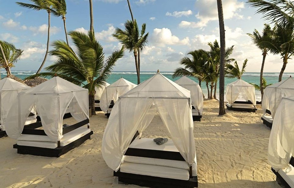 tree palm sky tent outdoor object sandy