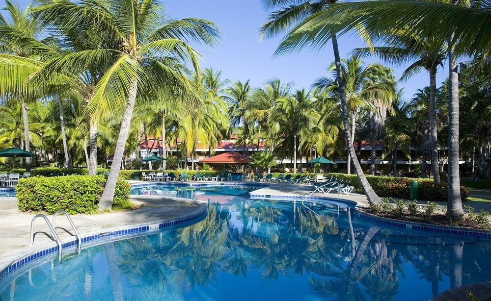 Outdoors Play Pool Resort tree palm swimming pool property leisure arecales lined plant resort town