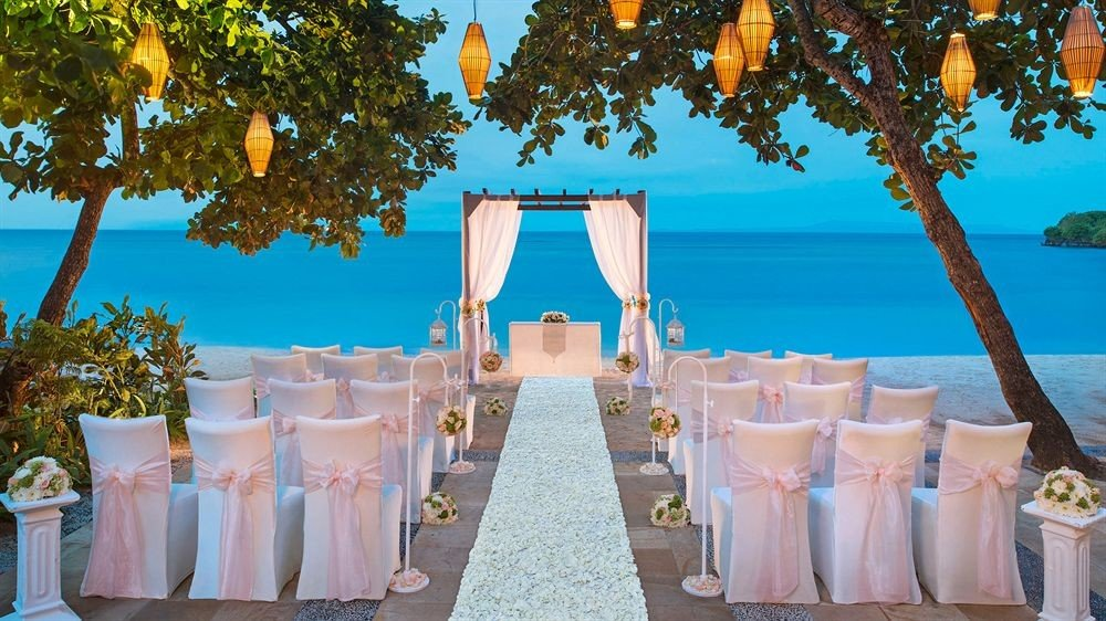 tree sky wedding ceremony Party event aisle wedding reception