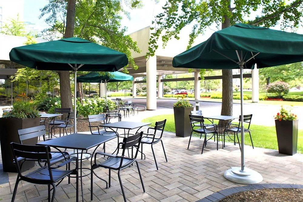 tree chair umbrella green gazebo lawn backyard outdoor structure canopy set Patio sunny shade lined day