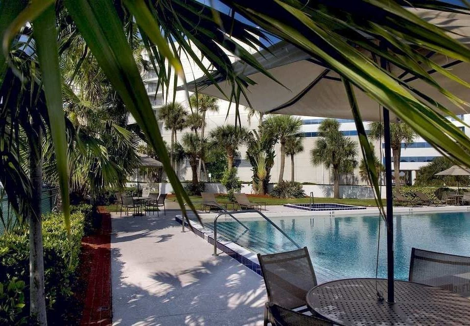 Patio Pool tree leisure swimming pool property Resort arecales Villa home condominium eco hotel caribbean backyard palm plant lined shade