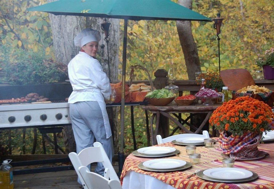 tree backyard Picnic cuisine dining table