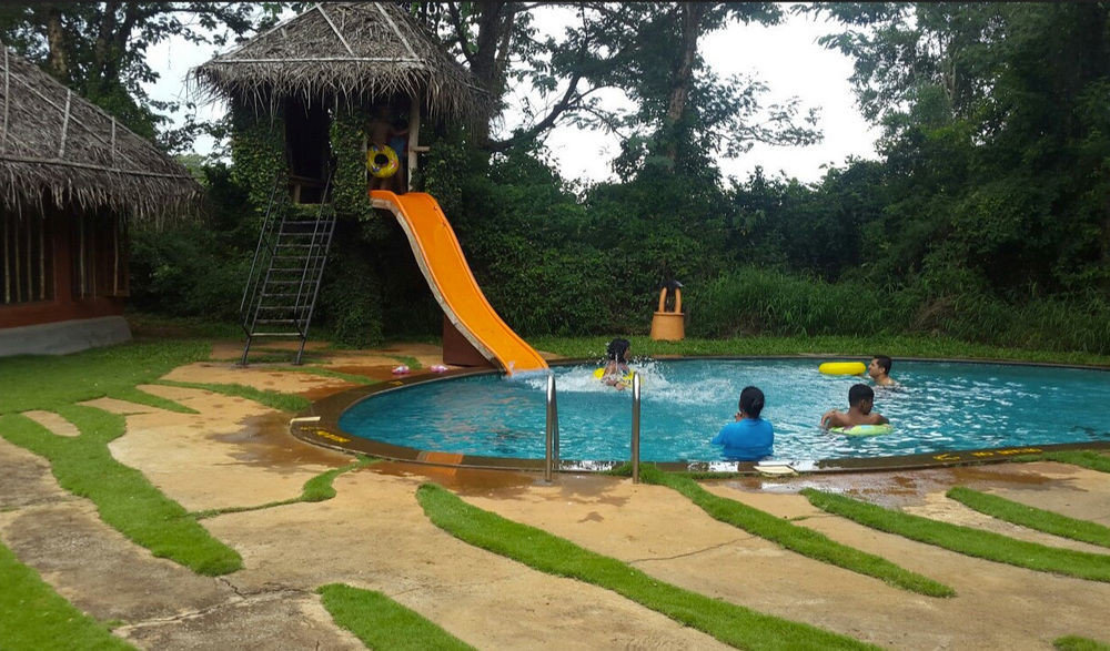 tree leisure swimming pool outdoor play equipment Playground backyard Play Water park park recreation playground slide Resort