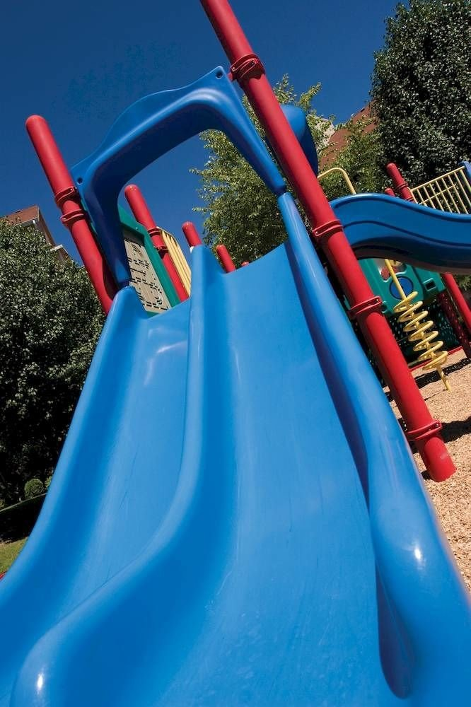 tree sky slide playground slide blue outdoor play equipment Playground inflatable Play games Water park outdoor recreation recreation amusement park tool outdoor object