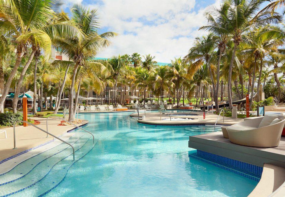 Play Pool Resort tree swimming pool leisure property caribbean resort town arecales Villa Water park condominium palm swimming
