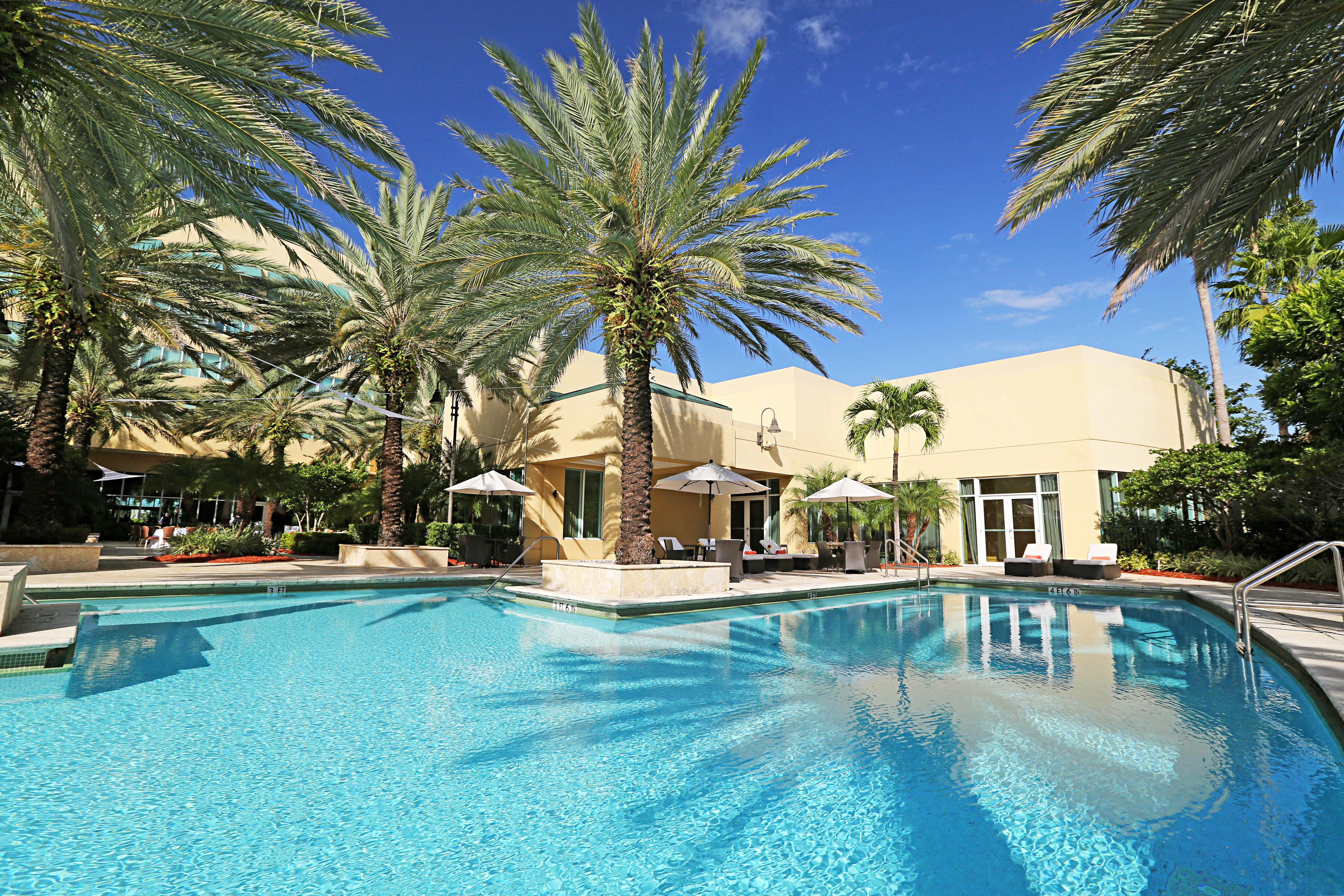 Play Pool Resort tree palm swimming pool property blue Villa swimming condominium resort town caribbean plant arecales reef lined