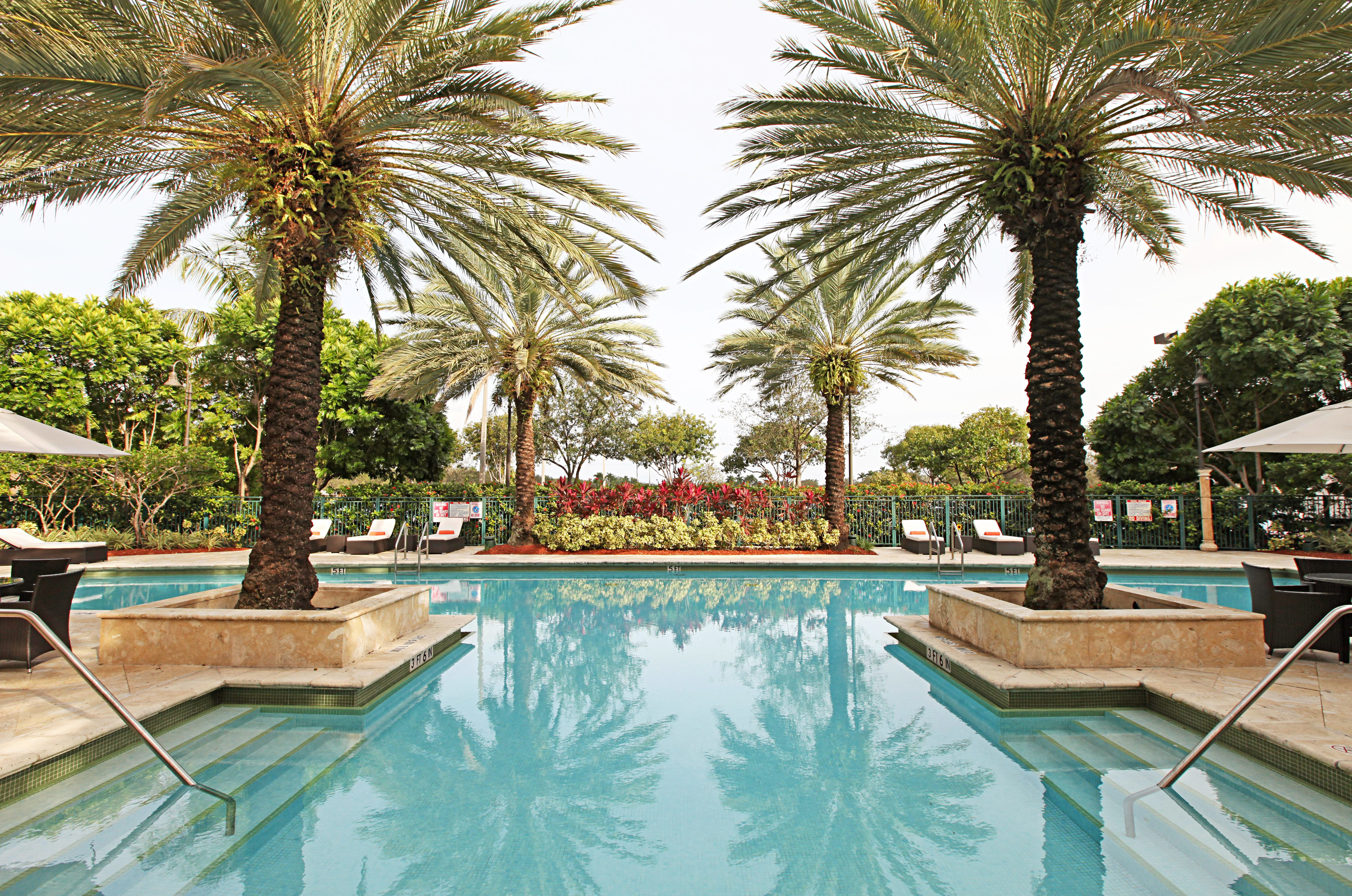 Play Pool Resort tree palm swimming pool property plant reflecting pool arecales Villa lined