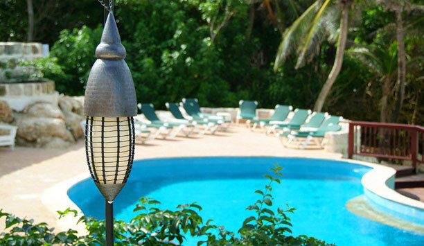 tree water swimming pool leisure majorelle blue Resort Pool backyard water feature outdoor structure plant amenity