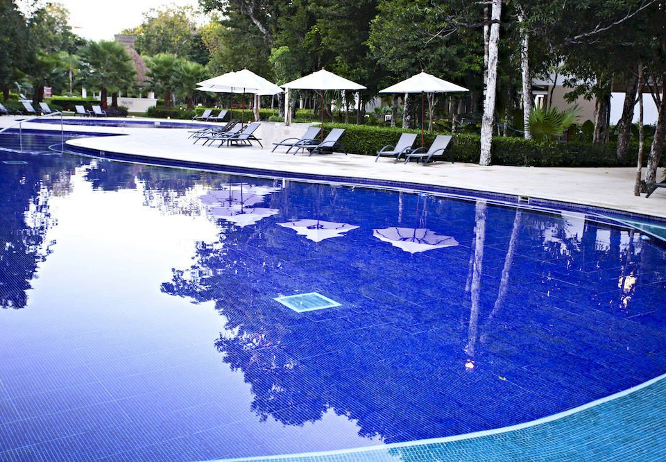tree swimming pool water reflecting pool backyard Pool pond blue Resort
