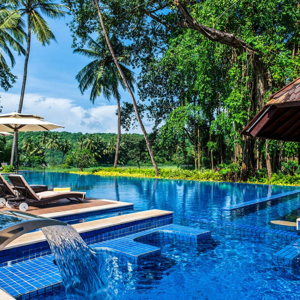 tree chair swimming pool leisure Pool Resort backyard lawn swimming shade