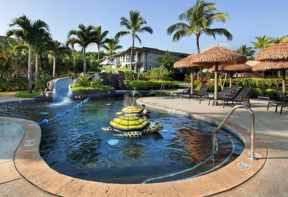 tree sky Resort swimming pool Pool property leisure palm backyard swimming
