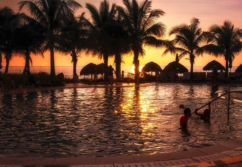 Pool Sunset Tropical water Sun tree evening arecales morning dusk Resort Sea sunrise palm family setting palm plant