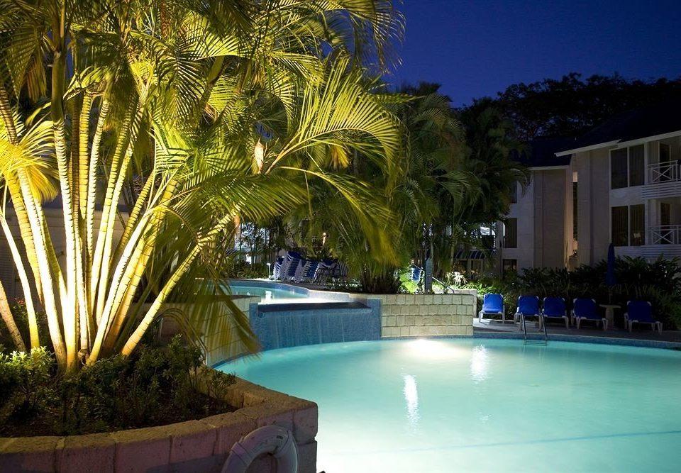 tree swimming pool property Resort Pool palm arecales condominium Villa palm family plant