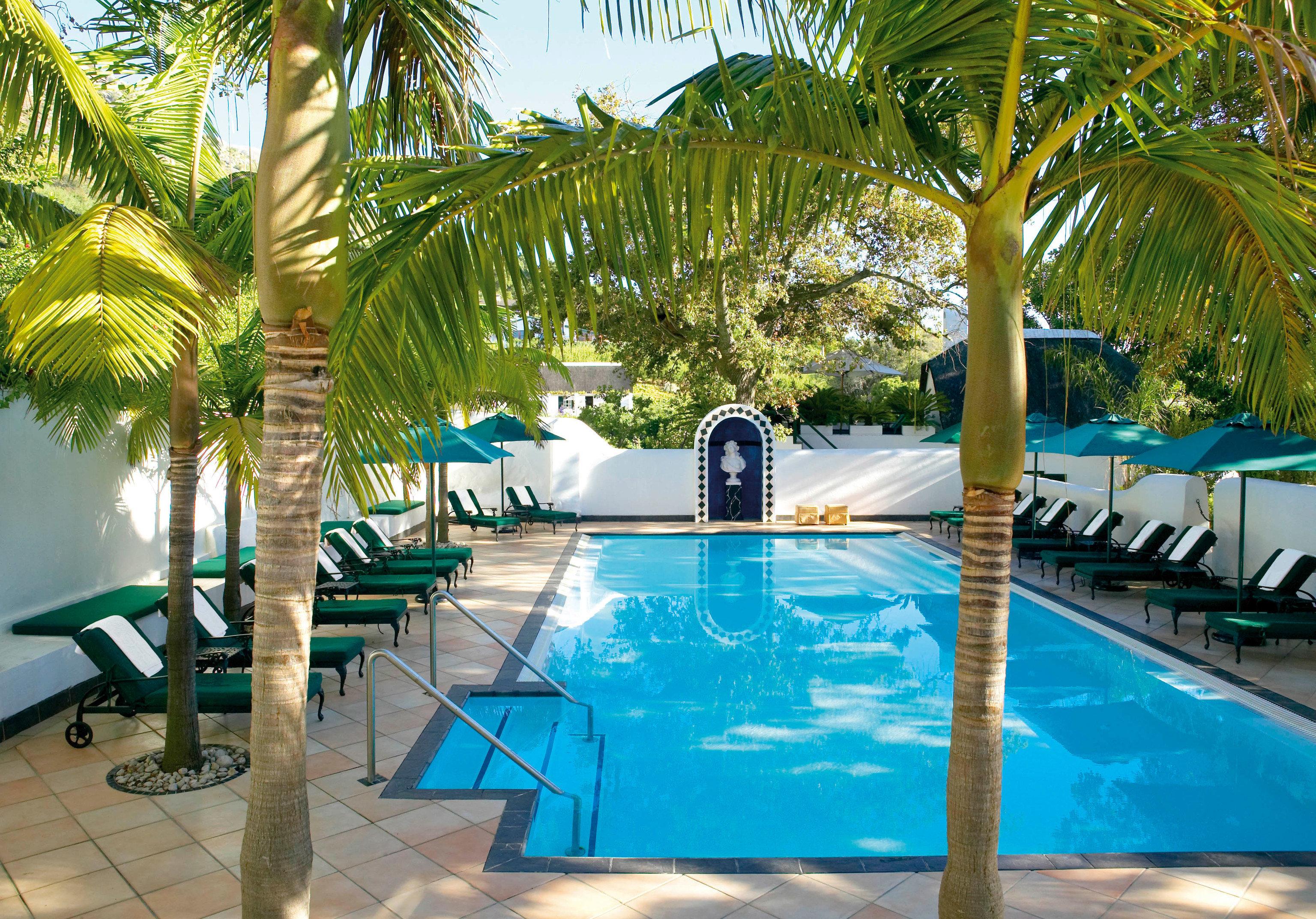 tree swimming pool leisure Resort property palm caribbean Pool Villa condominium plant arecales backyard
