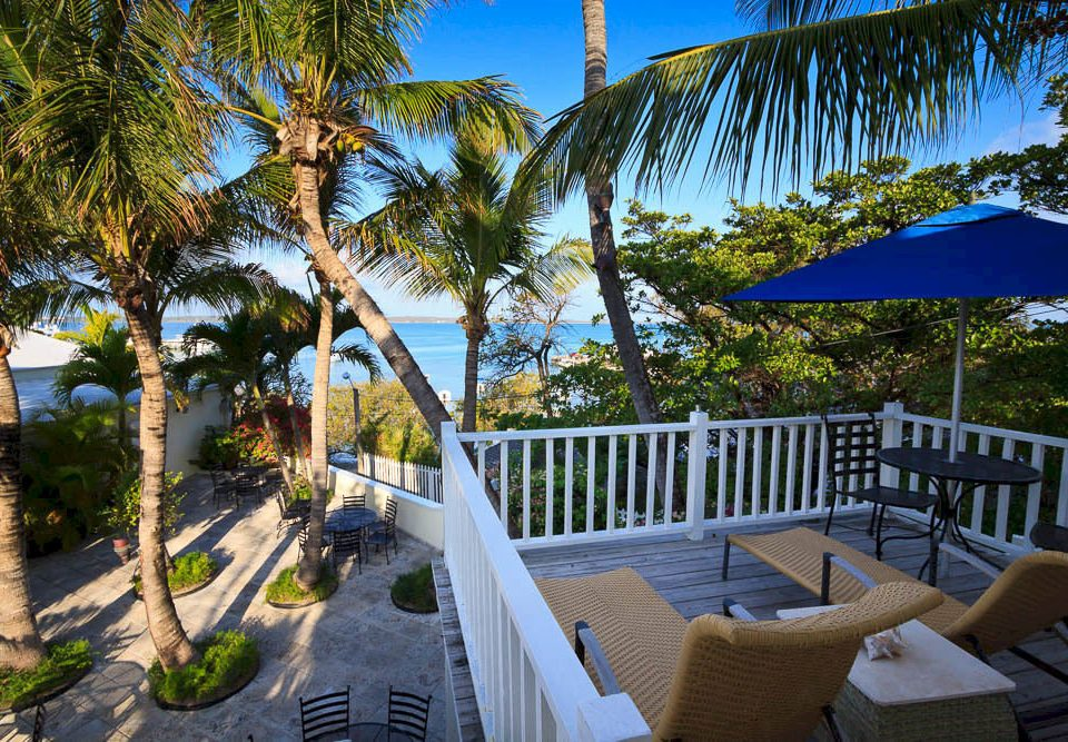 tree chair property palm Resort Villa Pool plant arecales lawn home cottage caribbean backyard lined shade surrounded