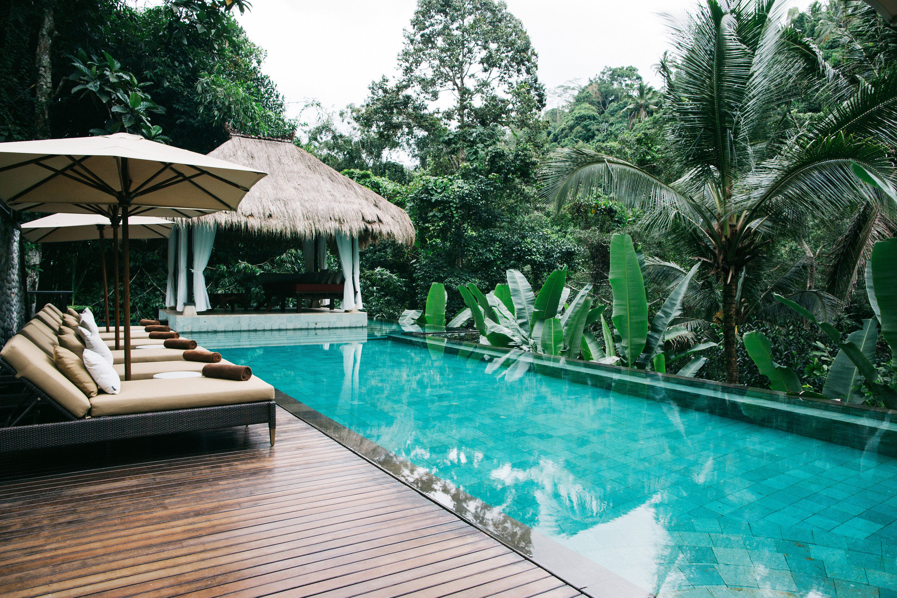 tree swimming pool building leisure property Resort Pool backyard Villa eco hotel